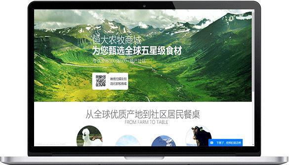 恒大农牧电商网站建设